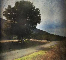 Been Down That Road Before by Laurie Search