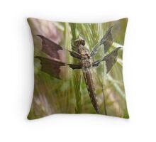 Black dragonfly Throw Pillow