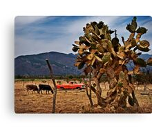 Red Truck - Jalisco Canvas Print