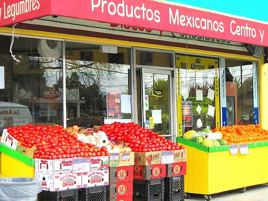 Mexican Grocery  by dez7