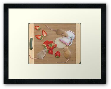 Strawberries and Cream Delight by Karen  Hull