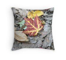 Splash of Fall Color Throw Pillow