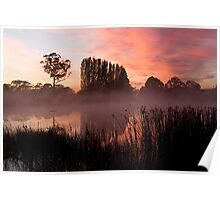 Gosling Creek at sunrise Poster