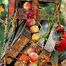 Apples 2 by Debbie  Maglothin