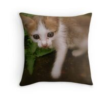 VISION OF SUNSET Throw Pillow