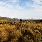Wonderful Ring of Kerry by LilouTravel