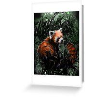 A Red Panda Greeting Card