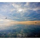' Port Phillip Bay ' by Mat Moore