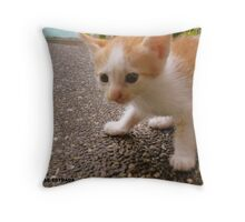 FREDO Throw Pillow