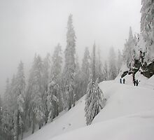 Grouse Mountain Snowshoeing  by Anna Lisa Vegter