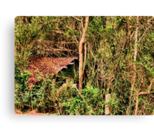 Shed in the Sticks Canvas Print