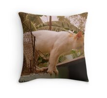 HERMOSO Throw Pillow