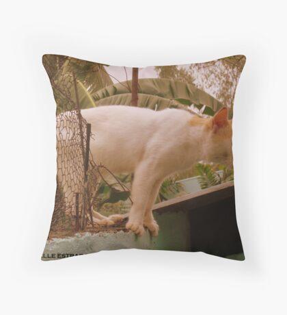 HERMOSO Throw Pillow