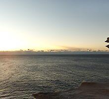 Sunrise Coasterlised by AndyPhoto