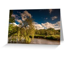 Willow on the Lagan Greeting Card