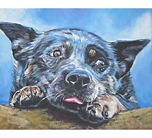 Australian Cattle Dog Fine Art Painting Photographic Print