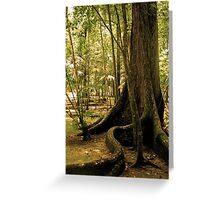Roots and vines Greeting Card