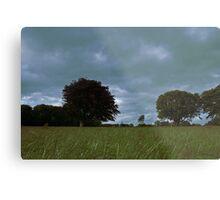 Castlegrove, Donegal Metal Print