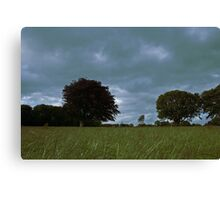 Castlegrove, Donegal Canvas Print