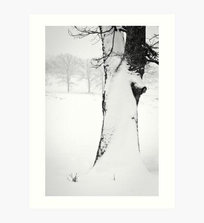 Snow Drift Tree Art Print