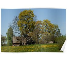 Spring in old farmstead 2  (Yellow trees) Poster