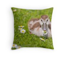Gosling with Daisy Throw Pillow
