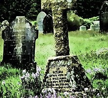 Bluebells in a graveyard, Dartmoor, UK (Altered by design) by buttonpresser