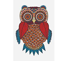 Pattern Owl Photographic Print