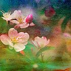 Spring Blossoms by Brenda Burnett