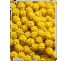 yellow blossoms iPad Case/Skin