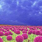 Pink and Purple by artstoreroom