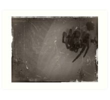 05-12-11:  The Spider  Art Print