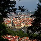 Looking down on Prague by Stefan Trenker