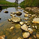 River Wharfe by Andrew Leighton