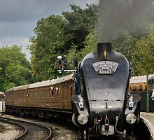 Sir Nigel Gresley 1 by Mike-G
