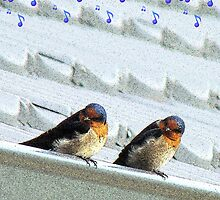 Welcome Home Greeting Card - Welcome Swallows - NZ by AndreaEL
