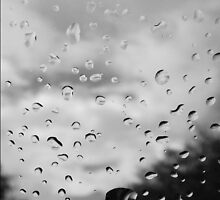 Reflecting Drops by Erica Yanina Lujan