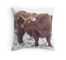 Highland cattle in snow Throw Pillow
