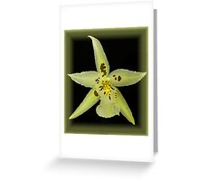 Orchid in a Frame Greeting Card