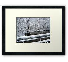 creek road bridge-2/2011 Framed Print