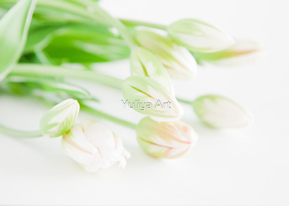 Sunshine Tulips by Yuliya Art