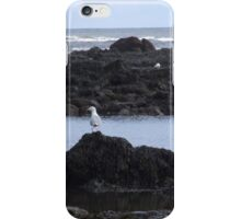 Seagull on rocks iPhone Case/Skin