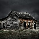 Weathered  by Justin Atkins