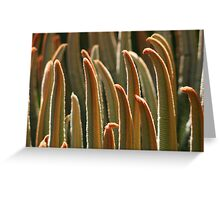 SAGO PALM FRONDS Greeting Card