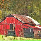 Red Barn with Horses by WTBird