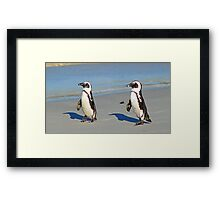 The march of the penguins! Framed Print