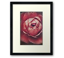 In Tough Times Framed Print