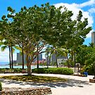 Waikiki Beach, Honolulu Oahu - HAWAII by Atanas Bozhikov NASKO