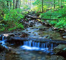 MOUNTAIN STREAM,SPRING by Chuck Wickham