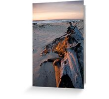 Driftwood Ablaze Greeting Card